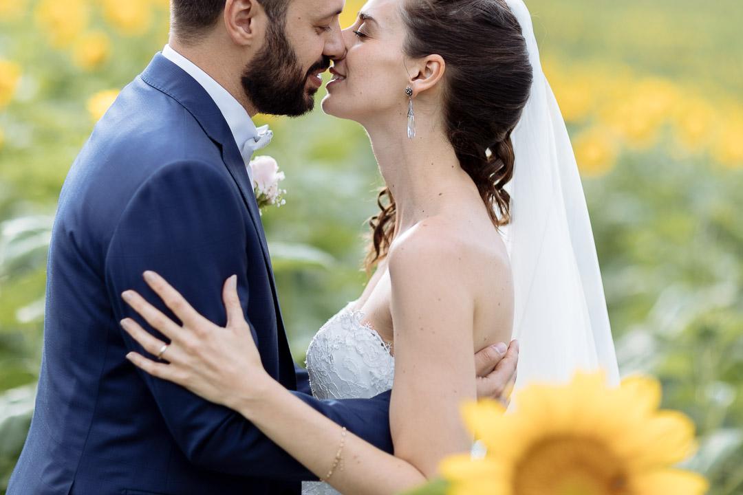 Sunflowers Monferrato Luca Vieri Wedding Photography Piedmont